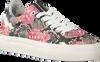 Roze FLORIS VAN BOMMEL Sneakers FLORIS VAN BOMMEL 85234 - small