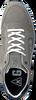 Grijze GAASTRA Sneakers KAI  - small