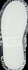 PINOCCHIO SNEAKERS P1656 - small