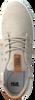 Beige HUB Sneakers CHUCKER - small