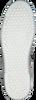 Witte ANTONY MORATO Sneakers MMFW00907 ANTONY MORATO - small