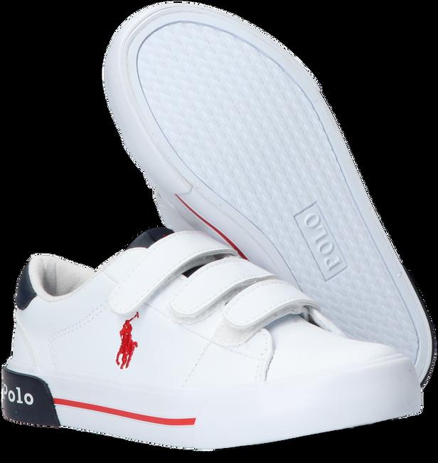 Witte POLO RALPH LAUREN Lage sneakers GRAFTYN EZ  - large