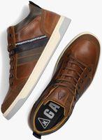 Cognac GAASTRA Hoge sneaker WALLER MID  - medium