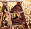 Cognac FLORIS VAN BOMMEL Sneakers 16277  - small