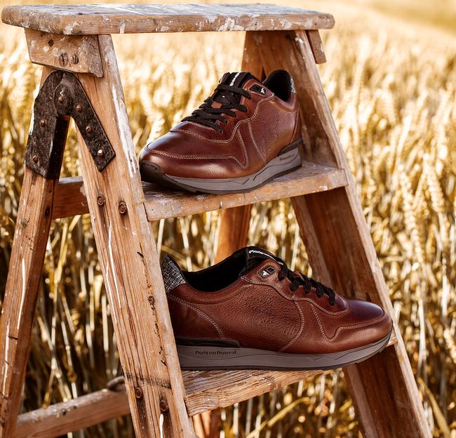 Cognac FLORIS VAN BOMMEL Sneakers 16277  - large