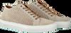 Beige BERNARDO M42 Sneakers YS2667  - small