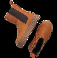 Cognac PINOCCHIO Chelsea boots P1463  - medium