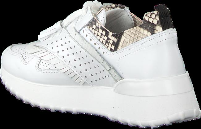 Witte NOTRE-V Sneakers AG283  - large