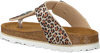 Beige OMODA Slippers 0027  - small