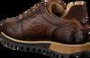 Cognac GIORGIO Sneakers HE09519  - small