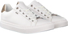 Witte MEXX Sneakers CLAIRE  - small