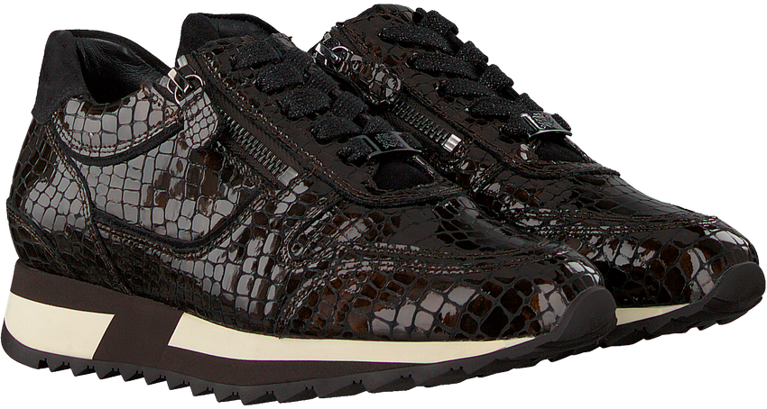 Bruine HASSIA Lage sneakers MADRID  - larger