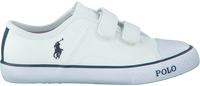 Witte POLO RALPH LAUREN Sneakers DAYMOND EZ  - medium