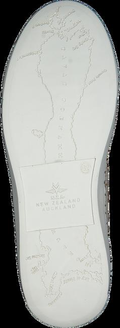 Beige NZA NEW ZEALAND AUCKLAND Sneakers TAUPO II LIZARD - large