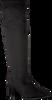 RAPISARDI LANGE LAARZEN P1801 - small