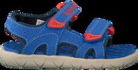 Blauwe TIMBERLAND Sandalen PERKINS ROW 2-STRAP  - medium