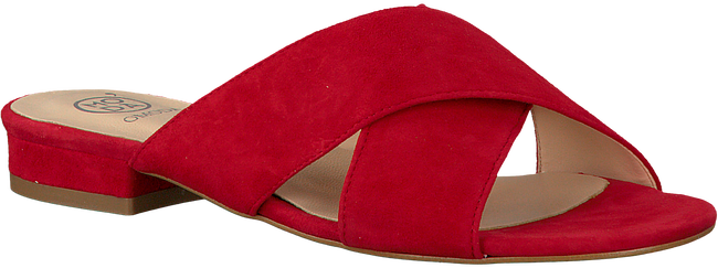 OMODA SLIPPERS 2203 - large
