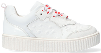 Witte BRAQEEZ Lage sneakers PAI PARIS  - medium