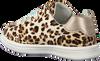 Beige BUNNIES JR Lage sneakers 220141  - small