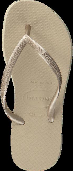 beige HAVAIANAS Slippers KIDS SLIM  - large
