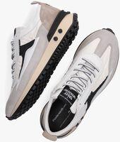 Beige FLORIS VAN BOMMEL Lage sneakers 16424  - medium