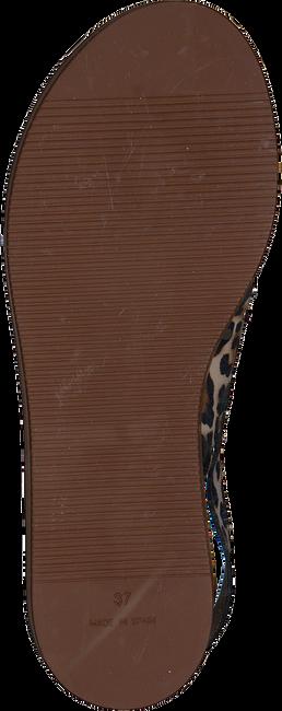 Bruine NOTRE-V Sandalen ETTO19 PN  - large