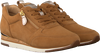 Cognac GABOR Lage sneakers 431  - small