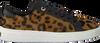 Bruine TED BAKER Sneaker ELZSEEL - small