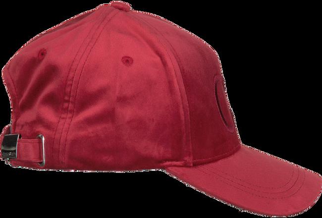 Rode CALVIN KLEIN Pet BASEBALL CAP VELVET - large