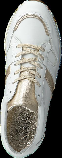 Witte OMODA Lage sneakers DANIELLE - large