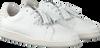 Witte STUDIO MAISON Sneakers SNEAKER SNAKE RUFFLE - small