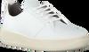 Witte EKN FOOTWEAR Lage sneakers ARGAN LOW SUTRI DAMES  - small