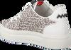 Zwarte FLORIS VAN BOMMEL Sneakers 85267  - small