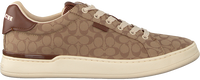 Camel COACH Lage sneakers ADB SIG JACQUARD LOW TOP - medium