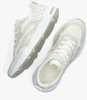 Witte SCOTCH & SODA Lage sneakers LOU  - medium