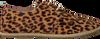 Bruine MARUTI Veterschoenen KES - small
