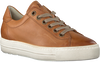 Camel PAUL GREEN Lage sneakers 4841 - small