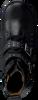 Zwarte BRAQEEZ Enkellaarsjes EMMA EAST  - small