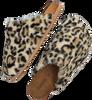 Beige OMODA Pantoffels ELIZE  - small