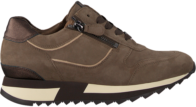Taupe HASSIA Lage sneakers MADRID  - large