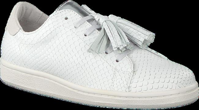 Witte STUDIO MAISON Sneakers SNEAKER SNAKE RUFFLE - large
