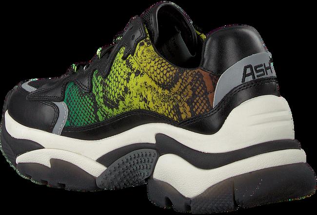 Zwarte ASH Sneakers ADDICTION  - large