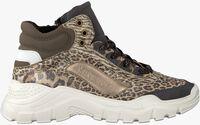 Taupe VINGINO Sneakers SABIA LOW  - medium