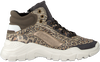 Taupe VINGINO Sneakers SABIA LOW  - small