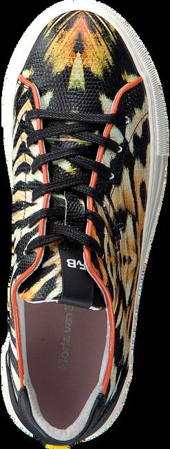 Oranje FLORIS VAN BOMMEL Lage sneakers 85297  - large