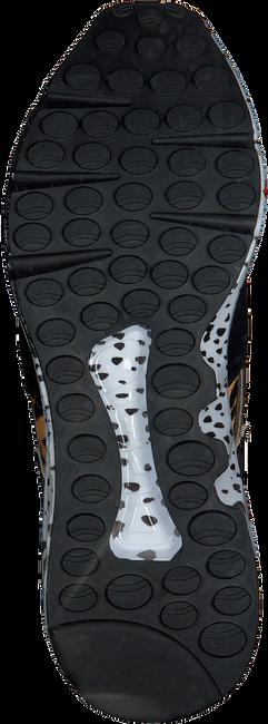 Bruine STEVE MADDEN Sneakers CLIFF SNEAKER - large