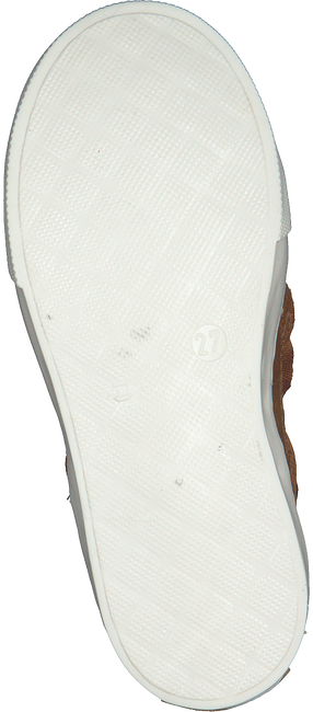 Cognac PINOCCHIO Sneakers P2178  - large