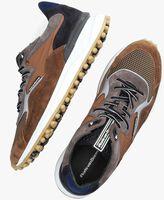 Cognac FLORIS VAN BOMMEL Lage sneakers 16339  - medium