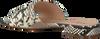 Beige NOTRE-V Slippers 41167  - small