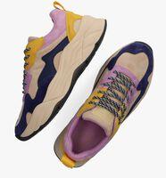 Multi SCOTCH & SODA Lage sneakers CELEST  - medium